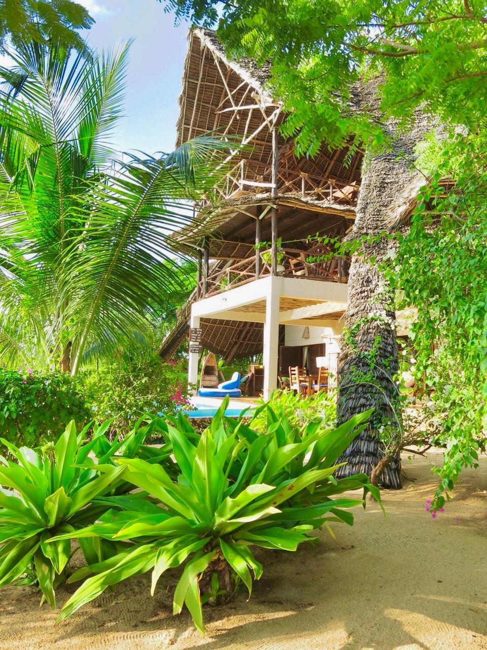 Villa Lisa Jungle