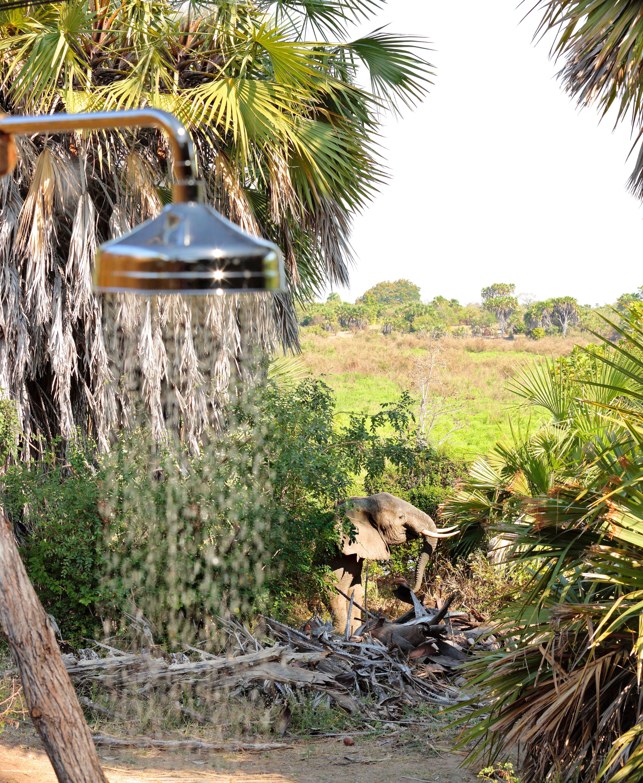 Shower And Elephant Spot Roho 2