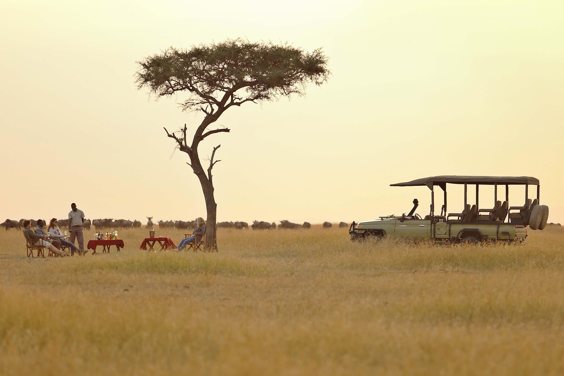 Olakira Camp, Safari