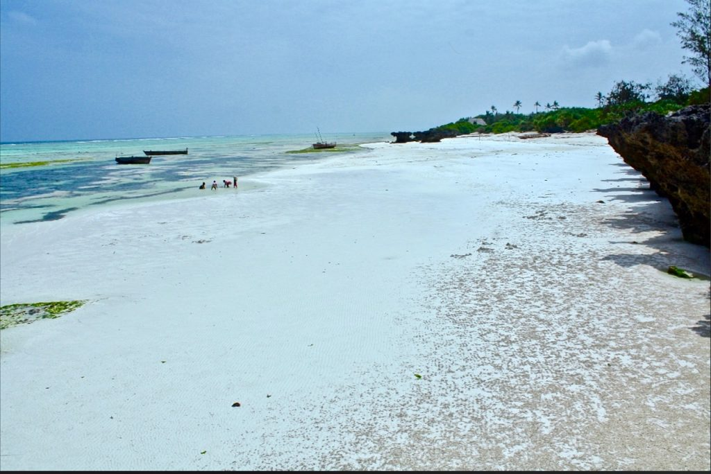 VILLA PARADISE ON THE OCEAN