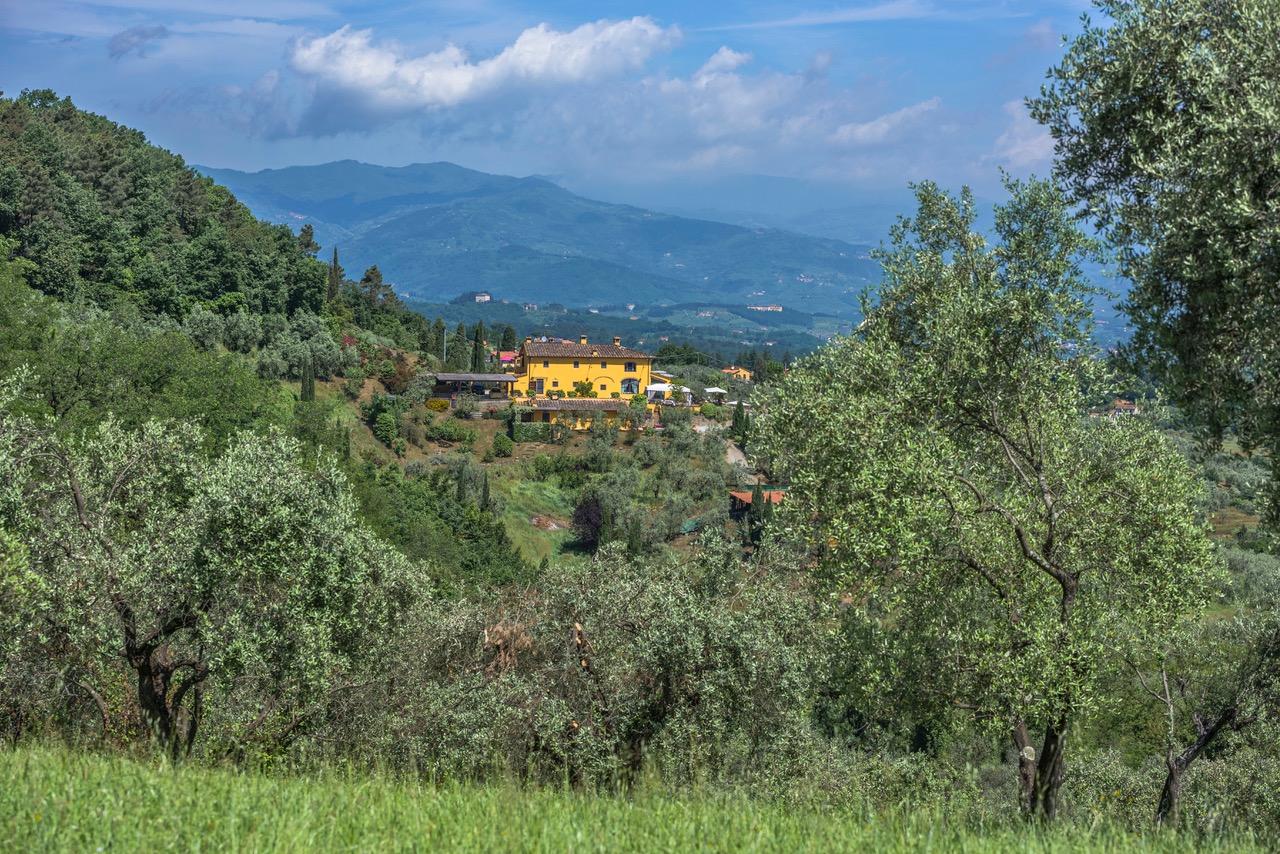Villa Del Sole 60