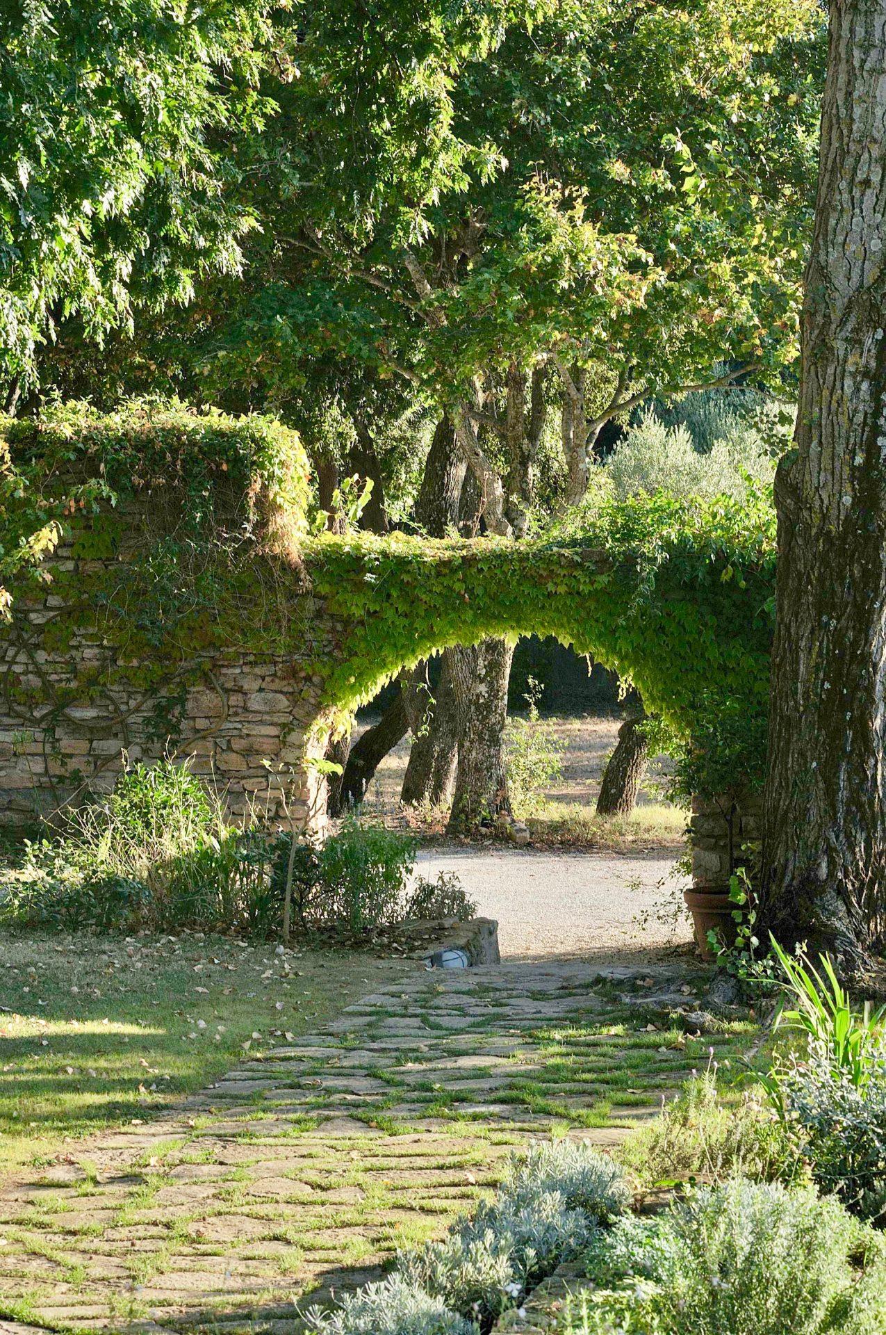 Garden Arch Jpg