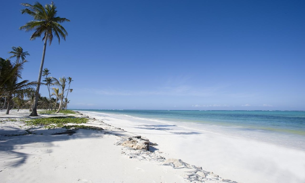 PALMS ON THE BEACH VILLA